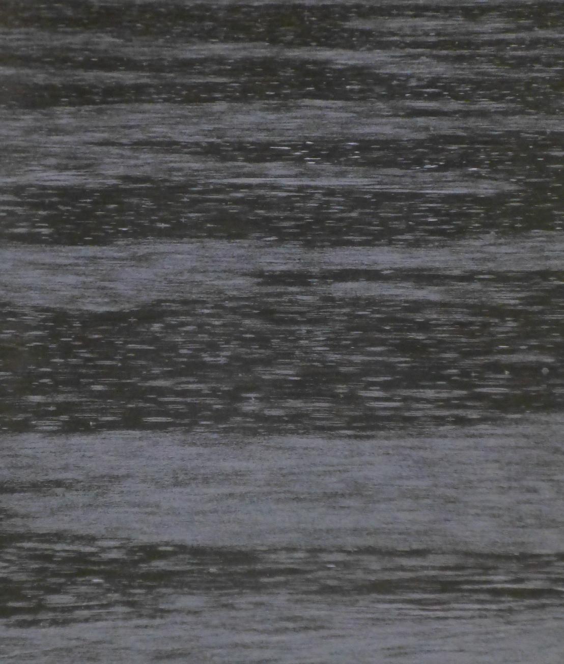 Der Herr Regen