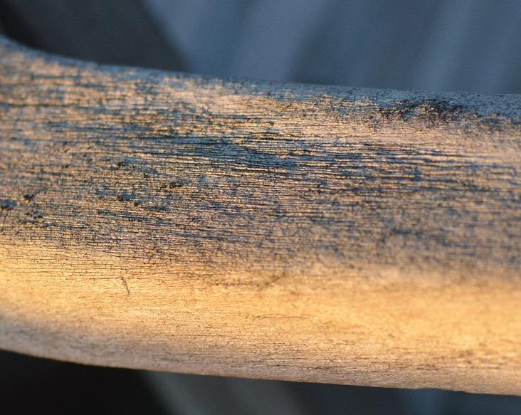 Holzlehne